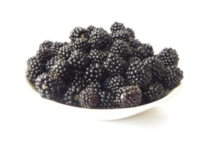 Blackberries are an excellent source of the antioxidants your skin needs! http://www.ibodyscience.com